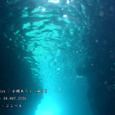 2006.05.04.田子-2.小蝶あらし.2