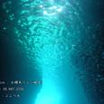2006.05.04.田子-2.小蝶あらし.3