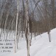 2007.01.28.奥日光-奥日光.シラカンバ.1