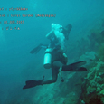 2007.06.10.Menjangan-1.Coral Garden.ytyrk&hmko