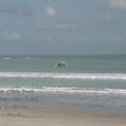 2007.06.11.Bali-1.Kuta.Kuta Beach.3