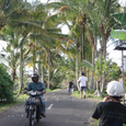 2007.06.11.Bali-3.Tegallalang~Ubud.1