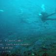 2007.06.09.Tulamben-1.Liberty Wreck.ギンガメアジ(群れ).5